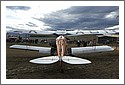 DH83_Fox_Moth_rear.jpg
