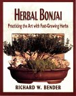 Herbal Bonsai : Practicing the Art With Fast-Growing Herbs