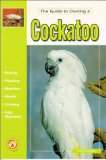 The Guide to Owning a Cockatoo