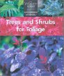 Trees and Shrubs for Foliage (Woody Plant)