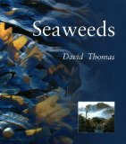 Seaweeds (Smithsonian s Natural World Series)